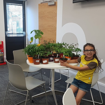 Aliona selling plants to donate 50% of the profits to charity.